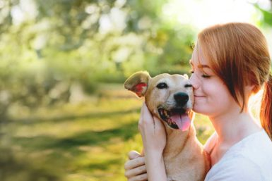 Dog Health Insurance - Finding Smart Pet Plans For Life